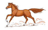 Chestnut horse gallop — Stock Photo