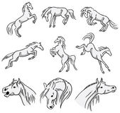 Rearing, bucking and jumping Arabian Horses — Stock Vector