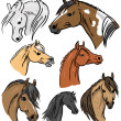 Stock Vector: Horse Portrait Collection