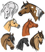 Horse Portrait Collection — Stock Vector