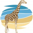 Stock Vector: Giraffe Illustration