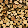 Woodpile — Stock Photo #14562619