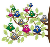 Funny flock of colorful birds — Stock Vector