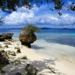 Wild Indonesian beach — Stock Photo