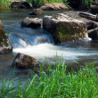 Spring flowing stream — Stock Photo #19749555