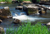 Spring flowing stream — Stock Photo