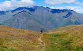 Lonely footpath Caucasus mountains — Stock Photo