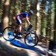 Stock Photo: Rider on mountain bike