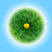 Bright green planet from grass — Stock Photo
