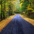 Foto Stock: Autumn road