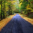 Stock fotografie: Autumn road