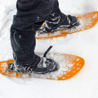 Snowshoes in the snow — Stock Photo