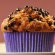 Delicious Chocolate Chip Muffin Treat on White Stone Plate — Stock Photo #14883209