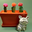 Save Water - Piggy Bank and Potted Cactus — Stock Photo