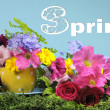 Beautiful Springtime bright colorful Spring flowers and polka dot cup. - Stock Photo
