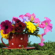 A Cup of Spring with beautiful colorful flowers in a red polka dot mug - Stock Photo