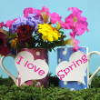 """I Love Spring: message on heart signs on polka dot mugs with beautiful colorful flowers. — Stock Photo"