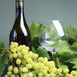 Royalty-Free Stock Photo: Bottle of white wine, wine glass with fresh grapes and vines.