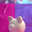 Colorful 'Shopping Sale Savings' concept with feminine pink and purple shopping bags and cute piggy bank. — Stock Photo #19889153