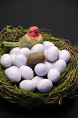 One chocolate Easter egg in bird's nest with sugar coated candy marble eggs. Vertical. — Stock Photo