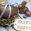 Happy Easter still life with chocolate eggs, bunny and gift tag on wood table. — Stock Photo #21768097