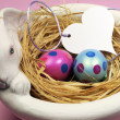 Pink and blue Easter eggs in white bunny bowl with heart gift tag on pink background. — Zdjęcie stockowe