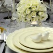 Close up of detail on wedding breakfast dining table setting with dove shape salt and pepper shakers — Stock Photo #27469779