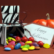 Halloween Zebra Trick or Treat Candy Boxes — Stock Photo