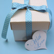 Blue theme present gift — Stock Photo #31072673