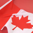 Close up for Canada flag for Canadian holidays, events, backgrounds and travel — Stock Photo