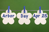 Happy Arbor Day April 25, greeting message across flower tags hanging from pegs on a line against a green background. — Stock Photo