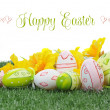 Happy Easter with daffodils and Easter Eggs — Stock Photo #44159687