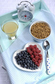 Gesunde Ernährung-hohe Ballaststoffe-Frühstück — Stockfoto
