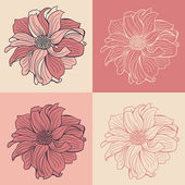Hand-drawn flowers of dahlia — Stock Vector