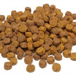 Dry dog food — Stock Photo #19028777