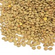 Green lentils - Stock Photo