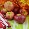 Cortland apples on display — Stock Photo