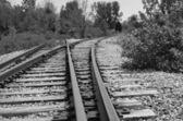 Railroad Tracks in rural Michigan wilderness — Stock Photo