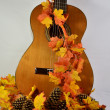 Guitar and Autumn Leaves — Stock Photo