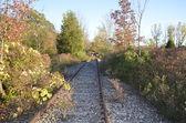 Verlassene Gleise — Stockfoto