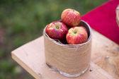 Jablka — Stock fotografie