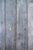 Rustic grungy paling fence background — Stock Photo