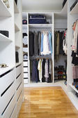 Modern walk in wardrobe vertical — Foto Stock