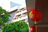 Chinese Lantern 5 — Stock fotografie