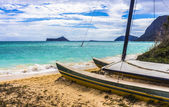 Catamaran on beach — Stock Photo