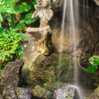 Stock Photo: Balinese Waterfall
