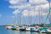 Sailing Club Marina 1 — Stock Photo