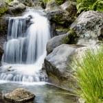 Waterfall — Stock Photo #28499033