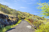 Makapuu Trail — Stock Photo