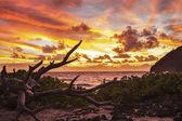Makapuu Sunrise — Stock Photo
